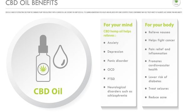 Does CBD Help with Pain?